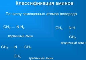Фото классификации ингибиторов аминов, myshared.ru