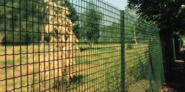 Сварная сетка с полимерным покрытием – надежная защита от коррозии
